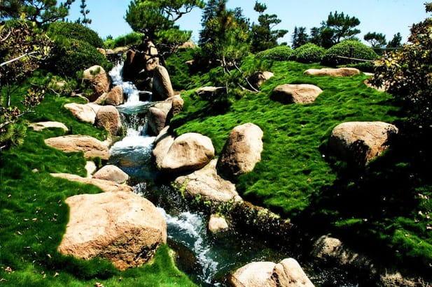 Korean Grass Waterfall